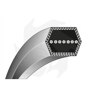 Cinghia Tipo AA 120  13 X 3048