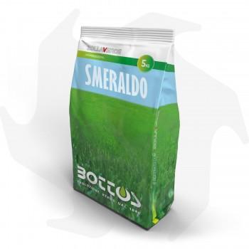 Smeraldo Bottos - 5Kg...